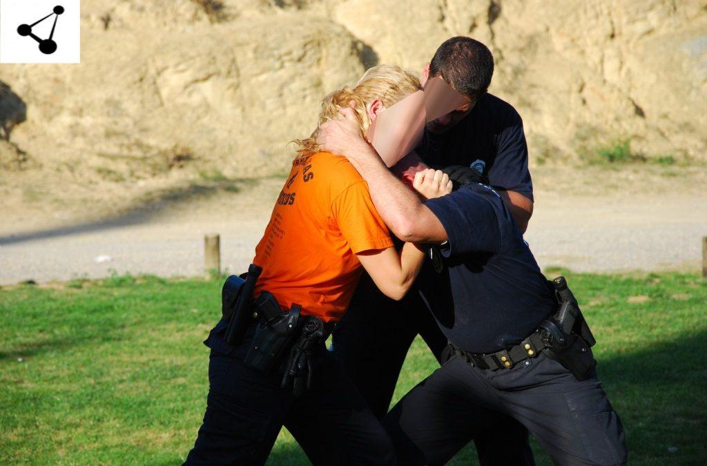CURSO DE PROTECCION  A VICTIMAS DE VIOLENCIA DE GENERO / VIOLENCIA DOMESTICA (Para escoltas privados)
